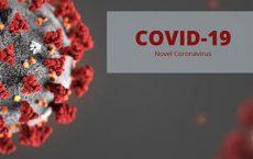 مقالات ترجمه شده کرونا ویروس COVID-19