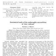 مطالعه آناتومیکی مایکوریزای اندوتروفیک افرا (Acerrubru)