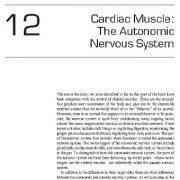 عضله قلب: سیستم عصبی خودمختار