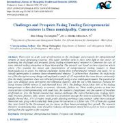 چالشها و چشم انداز های پیش روی سرمایه گذاریهای کارآفرینانه