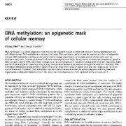 متیلاسیون DNA: یک نشانه اپی ژنتیک از حافظه سلولی