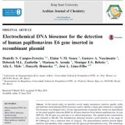 بیوسنسور DNA الکتروشیمیایی برای تشخیص ژن E6 پاپیلوماویروس انسانی
