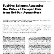 ماهی سالمون مهاجر: ارزیابی ریسکهای ماهیهای فرار کرده