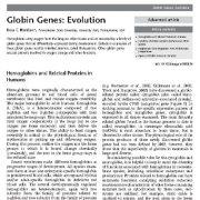 ژن های گلوبین: تکامل