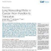 مطالعه ی دقیق نقش  و کارکرد و ترجمه ی RNA های غیر رمزی طویل در سرطان