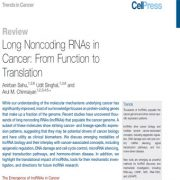 RNA های غیر رمزکننده بلند در سرطان: از کارکرد تا ترجمه