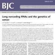 بررسی و مطالعه ی RNA  های بی رمز طویل  و تبیین اصول  ژنتیک سرطان