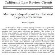 حقوق برابر در ازدواج و آثار به جا مانده از  فمینیسم