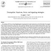 مروری برنقشها، فرمها و راهبردهای پیام رسانی سلولی  نوروگلین ها