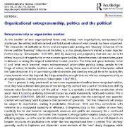 بررسی کارآفرینی سازمانی، امور سیاسی و خط مشی ها