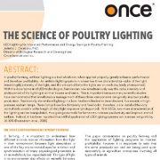 روشنایی ال ای دی برای بهبود عملکرد و صرفه جویی انرژی در پرورش طیور