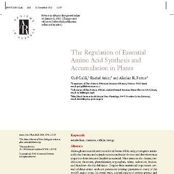 تنظیم سنتز آمینو اسیدهای ضروری و انباشت در گیاهان