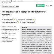 طراحی سازمانی مشاغل و شرکت های خطرپذیر کارآفرین