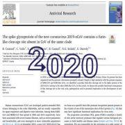 گلیکوپروتئین اسپایک کروناویروس جدید ۲۰۱۹-CoV