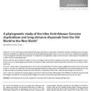 مطالعهی فیلوژنتیک قبیلهی گل میمونی: مضاعف شدگی ژن